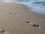 Rügen  - Fußtapsen im feuchten Sand